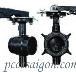 Lever Lock Butterfly Valve -  Grooved/ Wafer