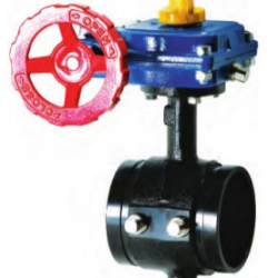 300 PSI Butterfly Valve | Grooved Tapped Body