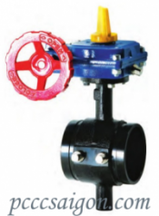 300 PSI Butterfly Valve - Grooved Tapped Body